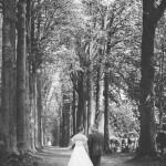 photo des mariés marchant dans une allée d'arbres centenaires
