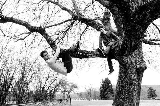 on fait le singe dans l'arbre